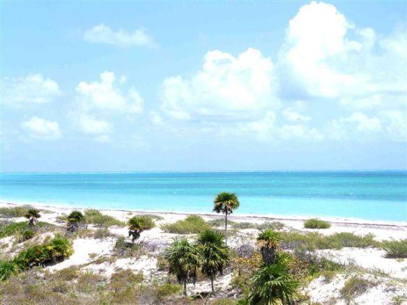 Isla Blanca Playarealtors-4u